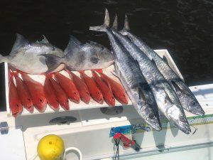 Fishing charters Daytona Beach