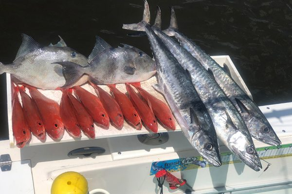 Daytona beach fishing charters